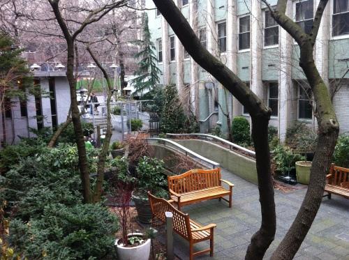 garden-winter 002