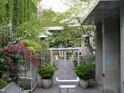 mary's garden-2