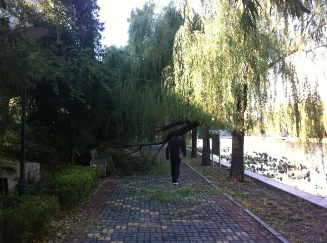 Winter-2012 005
