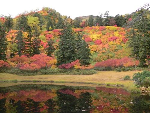 hokkaido fall foliage