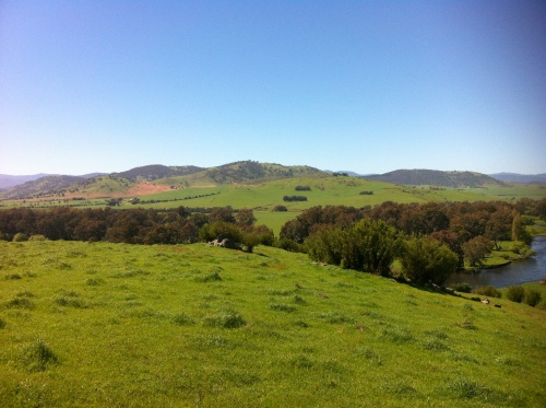 upper murray river valley-corryong 016