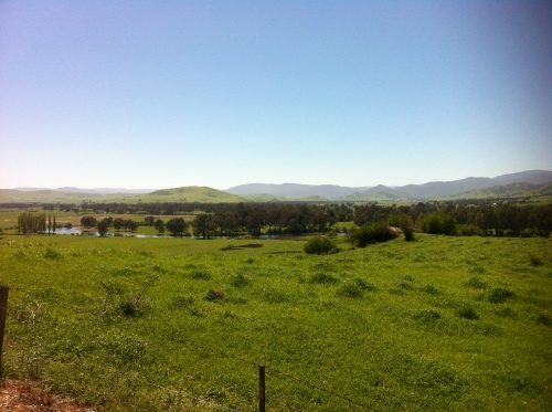upper murray river valley-corryong 017