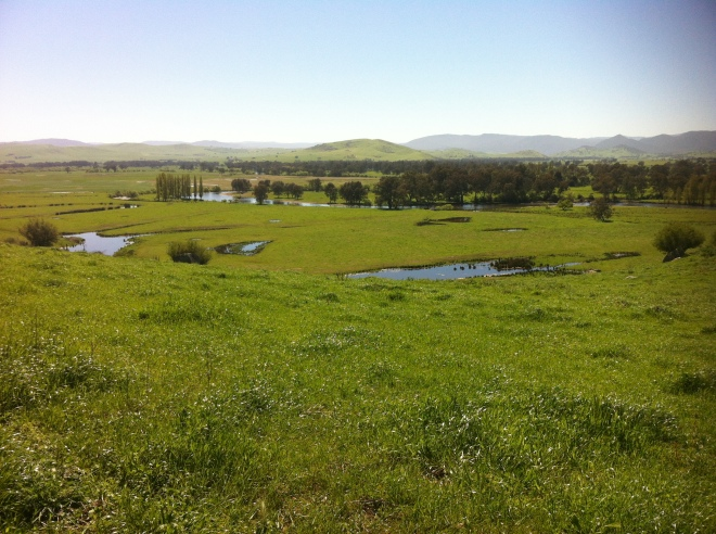 upper murray river valley-corryong 019