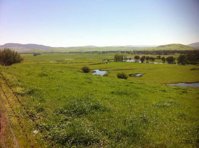 upper murray river valley-corryong 020