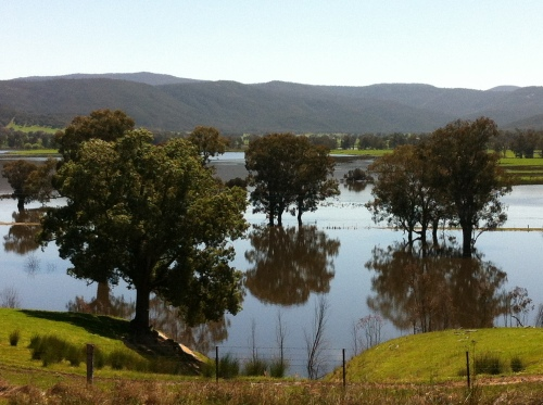 upper murray river valley-corryong 021