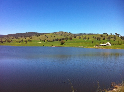 upper murray river valley-corryong 036