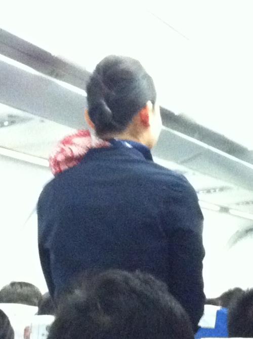 ears on plane 001