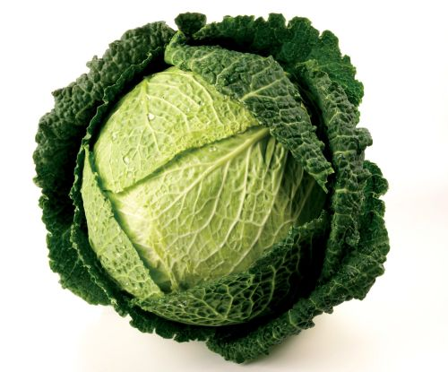cabbage-savoy 2