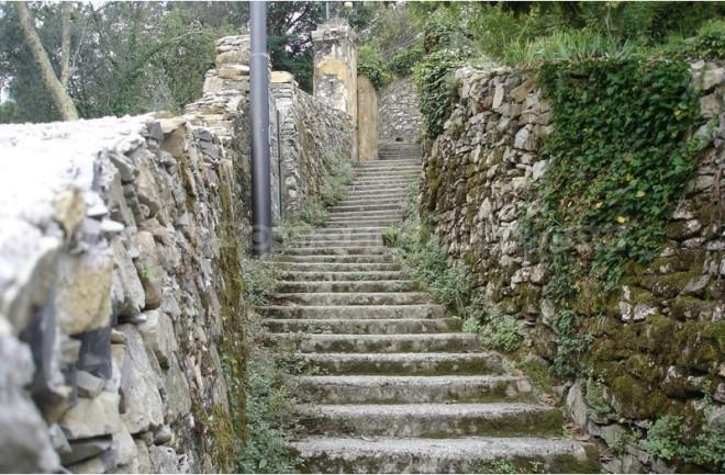 Camogli-San Rocco path-2