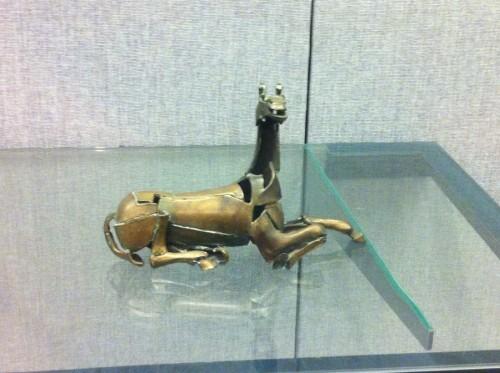 belgian horse 001