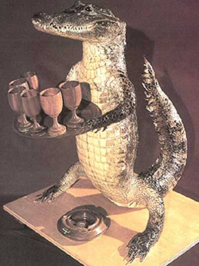 Kim present-alligator