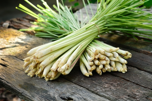 lemongrass bunch