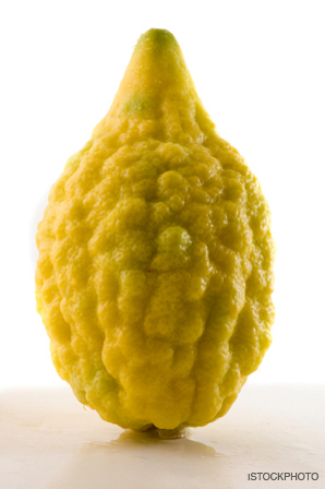 etrog the heart thrills
