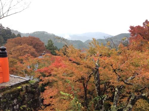 mount-kurama-1
